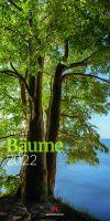 Kalender 'Bäume'